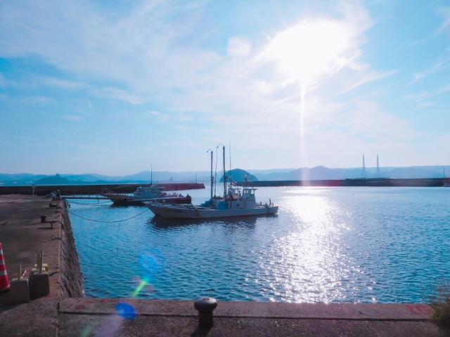 本土の唐津城が望める港
